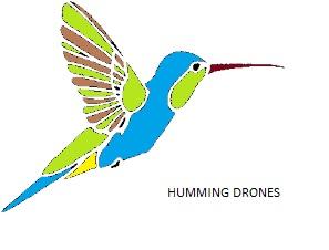 Humming Drones